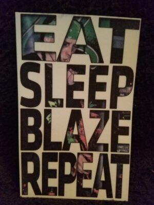 Eat Sleep Blaze Repeat Magnet