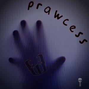 Prawcess – Shadow Man